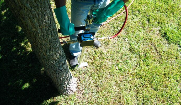 Deep Root Injection copy-Port St. Lucie's Best Tree Trimming and Tree Removal Services-We Offer Tree Trimming Services, Tree Removal, Tree Pruning, Tree Cutting, Residential and Commercial Tree Trimming Services, Storm Damage, Emergency Tree Removal, Land Clearing, Tree Companies, Tree Care Service, Stump Grinding, and we're the Best Tree Trimming Company Near You Guaranteed!