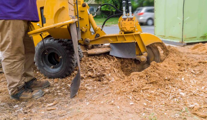 Stump Grinding-Port St. Lucie's Best Tree Trimming and Tree Removal Services-We Offer Tree Trimming Services, Tree Removal, Tree Pruning, Tree Cutting, Residential and Commercial Tree Trimming Services, Storm Damage, Emergency Tree Removal, Land Clearing, Tree Companies, Tree Care Service, Stump Grinding, and we're the Best Tree Trimming Company Near You Guaranteed!