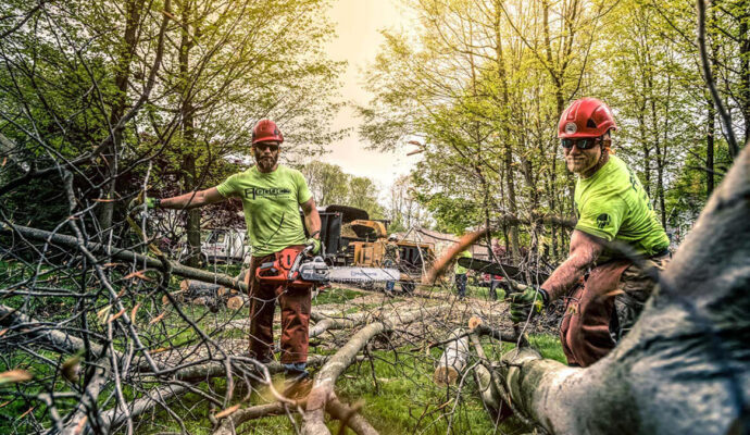 Treasure Coast copy-Port St. Lucie's Best Tree Trimming and Tree Removal Services-We Offer Tree Trimming Services, Tree Removal, Tree Pruning, Tree Cutting, Residential and Commercial Tree Trimming Services, Storm Damage, Emergency Tree Removal, Land Clearing, Tree Companies, Tree Care Service, Stump Grinding, and we're the Best Tree Trimming Company Near You Guaranteed!