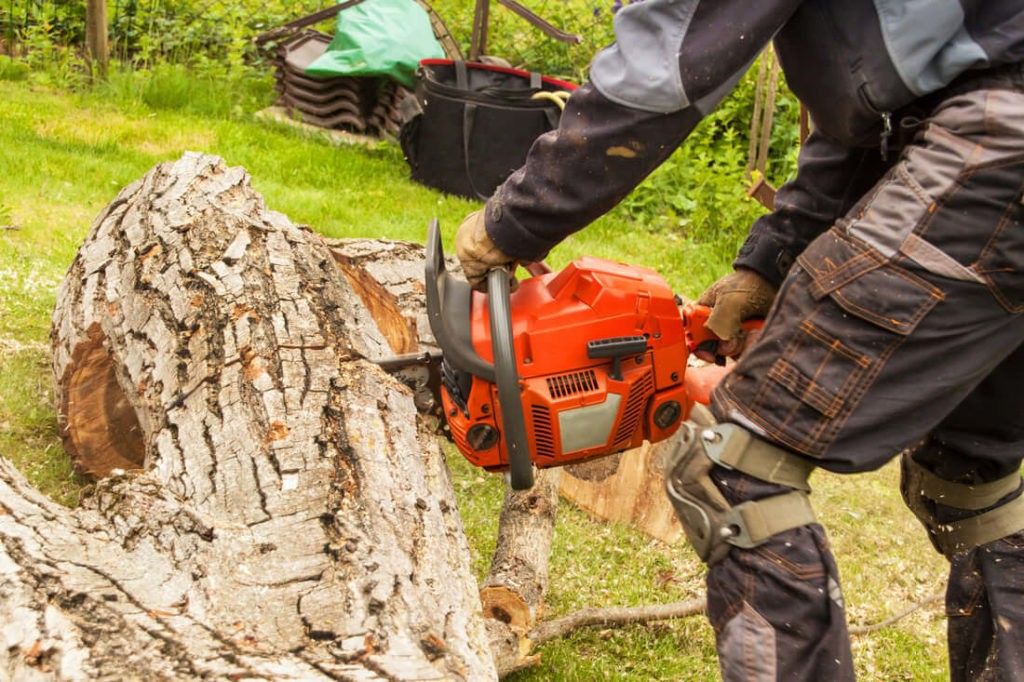 Tree Stump Removal-Port St. Lucie's Best Tree Trimming and Tree Removal Services-We Offer Tree Trimming Services, Tree Removal, Tree Pruning, Tree Cutting, Residential and Commercial Tree Trimming Services, Storm Damage, Emergency Tree Removal, Land Clearing, Tree Companies, Tree Care Service, Stump Grinding, and we're the Best Tree Trimming Company Near You Guaranteed!